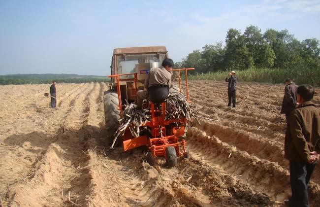 甘蔗种植机械化技术概述